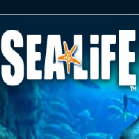 sea-life-aquariums-in-az