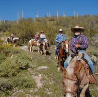 betty's trail rides horseback riding in az