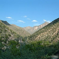 Sabino Canyon Sightseeing in AZ