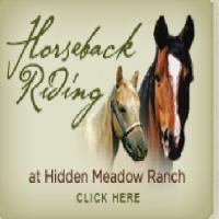 hidden-meadow-ranch-az