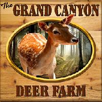 the-grand-canyon-deer-farm-az