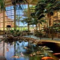Embassy Suites Hotel Phoenix Biltmore Arizonas most romantic hotel getaways