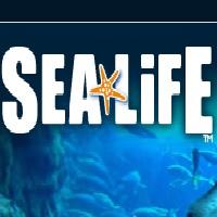 sea-life-aquariums-in-az