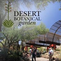 Desert Botanical Garden Sightseeing in AZ