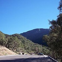 Madera Canyon Sightseeing in AZ